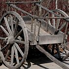 Authentic Red River Cart by Larry Trupp
