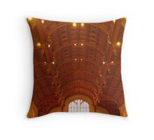Spine of a ceiling! Throw Pillow