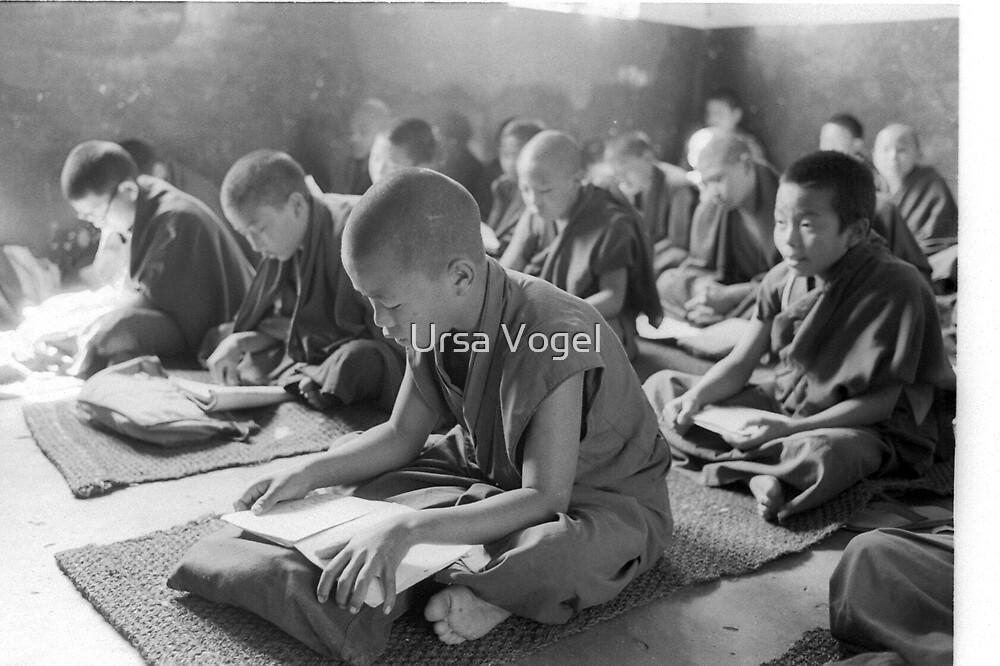 Sera Jhe primary school  by moyo
