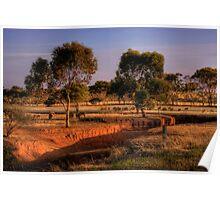 Grazing Sheep - Kanmantoo, Adelaide Hills, South Australia Poster
