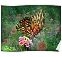 Wildflowers and Butterflies Poster
