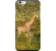 reticulated giraffe - pilanesburg, south africa iPhone Case/Skin