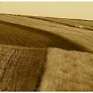 ♥ ♥ ♥ ♥ series. Galicia  -  Lesser Poland  -  landscape . Brown Sugar Book Story. Music by Fryderic Chopin  - Fantasie Impromptu . Fav 1 Views: 1501 . thx!  featured in Brain Science, Brain Arts. by AndGoszcz
