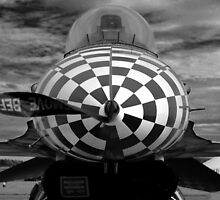 F-16 Nosejob by Rees Adams