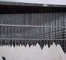 Crystal Palace Aquatic Centre London by Shannon Friel