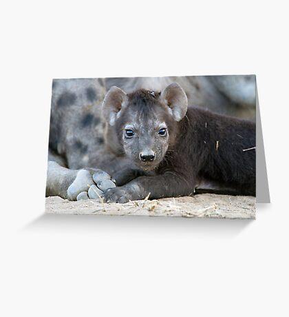 Hyena Cub Greeting Card