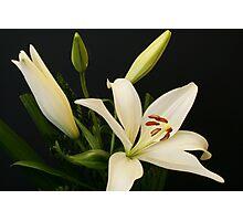 A floral portrait Photographic Print