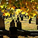 Fall Orton Cemetery by Debbie Robbins