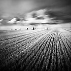 Sweeping Clouds by Squance