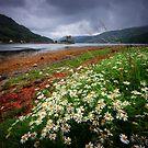 Eilean Donan Castle, Skye by David Mould