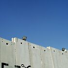 Graffiti - The West Bank Separation Wall, Palestine by Shannon Friel