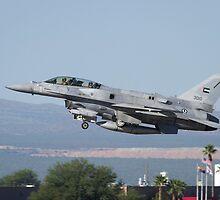 """F-16 Block 60 """"Desert Vipers""""   by Chris Heising"""