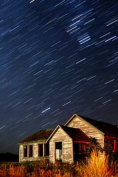 Orion Screaming Overhead - Star Trails by A.M. Ruttle