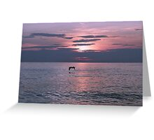 The Flordia sunset #3 Greeting Card