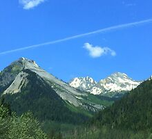 Rogers Pass BC Canada by Jeannine de Wet