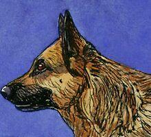 German Shepherd by Brenda Scott