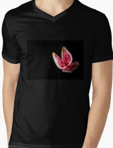 Fig  Mens V-Neck T-Shirt