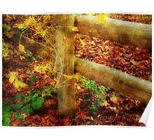 Autumn Hues ©  Poster