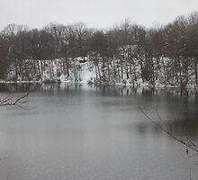 Winter on Lake by bizarreXpress