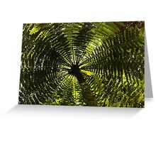 fernished forest, madagascar Greeting Card