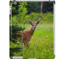The Wild Buck iPad Case/Skin