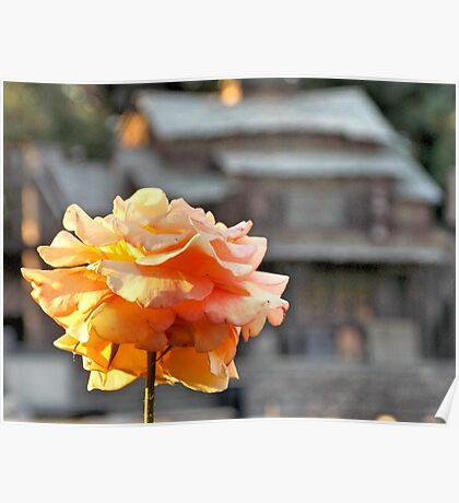tom sawyer rose Poster
