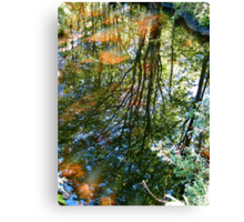 Reflections in the Stream II Canvas Print