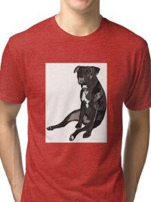 SittingPitty Tri-blend T-Shirt