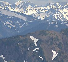 Olympic Mountains by arad1320