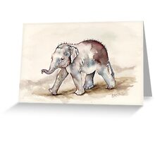 Young Mali the Elephant Strides Out Greeting Card