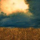 Burning Sky by Jamie  Palmer