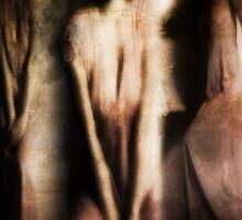 Triptych (b)  by Ms.Serena Boedewig