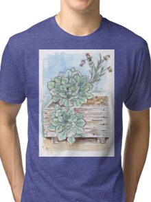 Echeveria imbricata painting 1 Tri-blend T-Shirt
