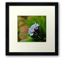 Blue and Green Framed Print