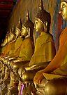 Buddhas by Dave Lloyd