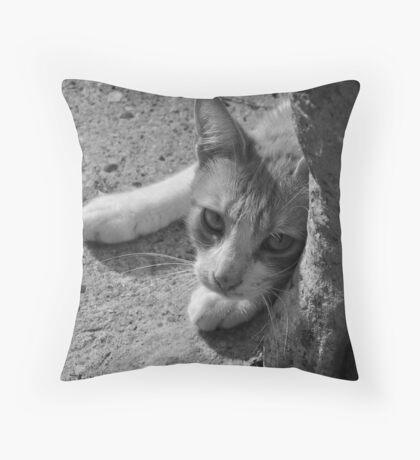Playful Throw Pillow