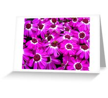 Busy, Busy Bee Greeting Card