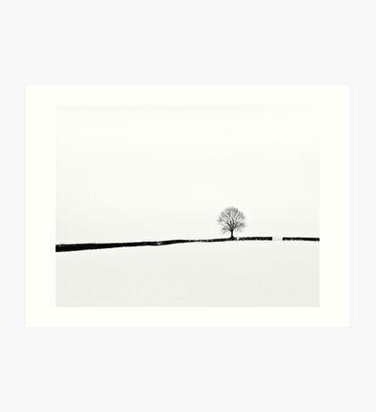Simplicity of Snow Art Print