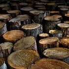 Stacked Logs by Squance