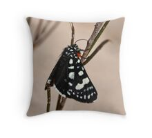 Grapevine Moth #2 Throw Pillow