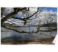Loch Tay on a Spring Morning Poster