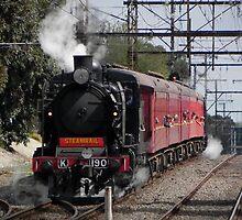Steamrail Shuttles by Fraser .D. Trembath