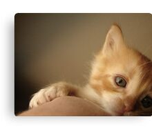 R.I.P. Sweet Little Baby Canvas Print