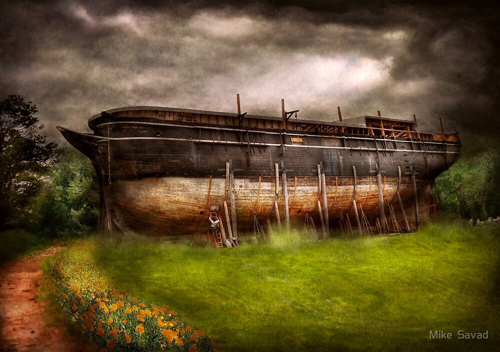 Boat - The construction of Noah's Ark by Mike  Savad