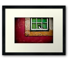 Cat in Lisbon Framed Print