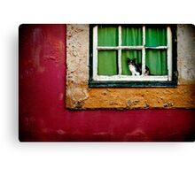 Cat in Lisbon Canvas Print