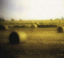 The Dawning by RC deWinter