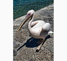 Pelican of Mykonos Island Petros the Pelican-JOURNAL,PILLOW,TOTE BAG,ECT. Unisex T-Shirt