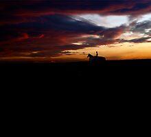 Night Rider by BigD
