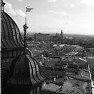 Krakowian Vista - St Mary's Basilica, Krakow, Poland by BlackhawkRogue